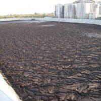 fanghi da depurazione: nuove disposizioni nel decreto Morandi