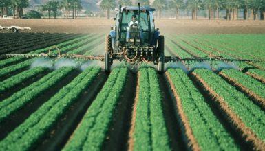 normativa-sicurezza-agricoltura-adempimenti-aziende-agricole