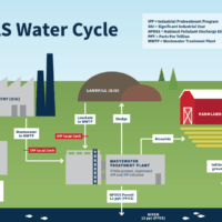 PFAS_Water_Cycle