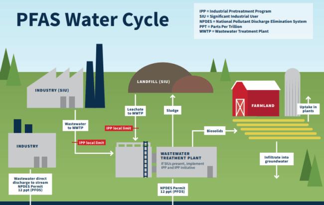PFAS_Water_Cycle